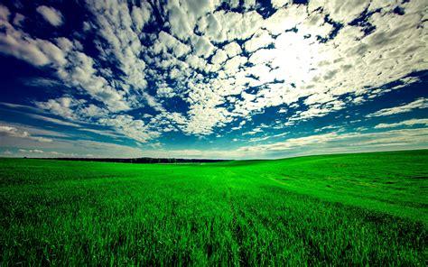 wallpaper  field sky grass clouds