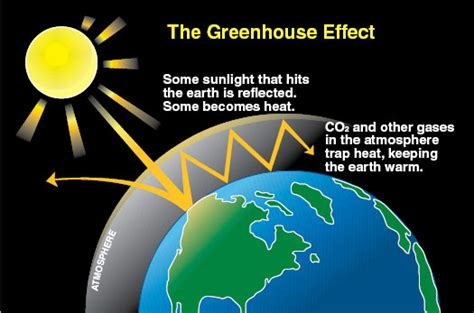 diagram of greenhouse effect how the greenhouse functions notes from the greenhouse