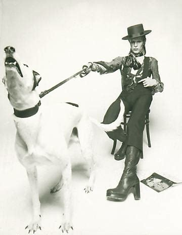 david bowie dogs rip david bowie musician artist and animal lover