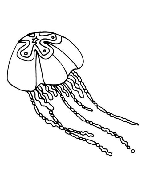 box jellyfish coloring pages free coloring pages of a cartoon jelly fish