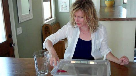Kitchen Pantry Scientist by Vid06723 171 The Kitchen Pantry Scientist