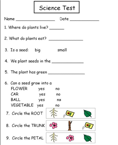 1 Grade Science Worksheets by Science Worksheets For Grade 1 Plants Grade Plants Smore