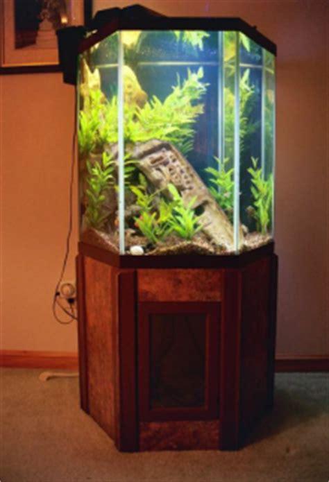 roman ruin sculpture    gal corner aquarium  jim