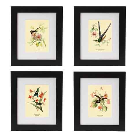 set of 6 vintage hummingbird art prints antique bird art wall hanging home decor ebay hummingbird print set hummingbird art by adamsaleartprints