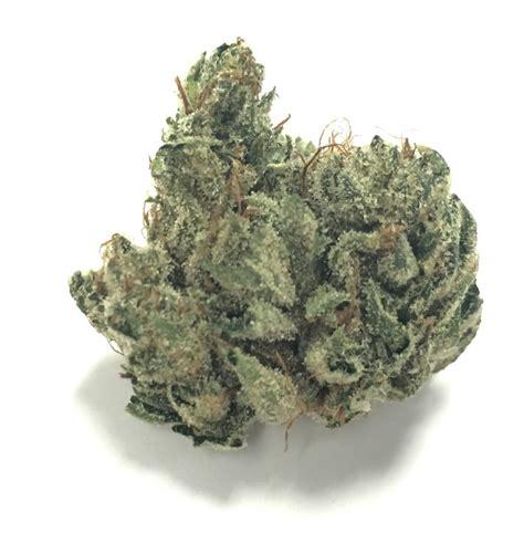 walker strain white walker og archives vegas cannabis magazine