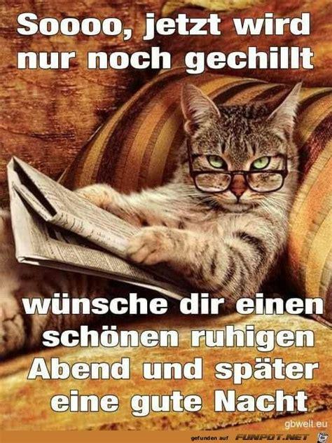 Gute Nacht Katzen Bilder by Die Besten 25 Gute Nacht Bilder Katzen Ideen Auf