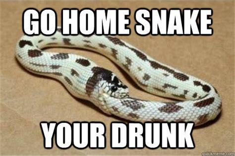 Snake Meme - go home snake memes quickmeme