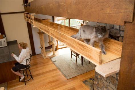 giochi di da costruire e arredare arredare con il legno una casa a misura di gatti