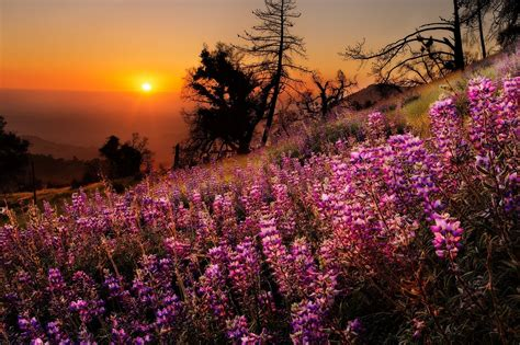 nature colors nature colors colorful landscape scenery view sky sunset
