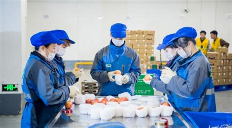 alibaba uganda china alibaba leads us 300m investment round in yiguo