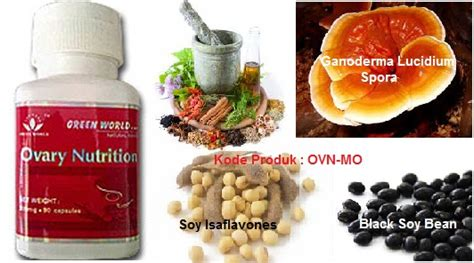 Ovary Nutrition Capsule Green World Obat Cepat Kesuburan ovary nutrition capsule green world