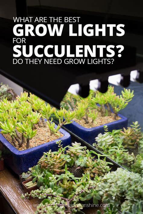 Best Grow Lights by Best 25 Grow Lights Ideas On