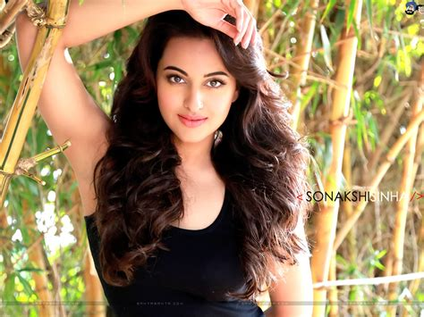 biography movies list all time sonakshi sinha biography upcoming movies box office