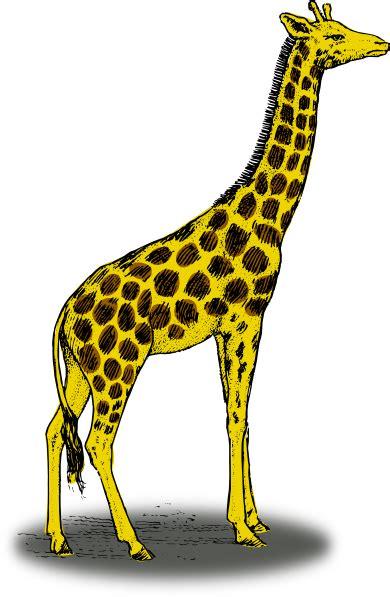 giraffe clip art  clkercom vector clip art  royalty  public domain