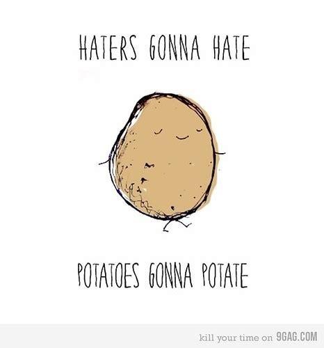 Potato Quotes by Haters Lol Potato Random Image 319582 On