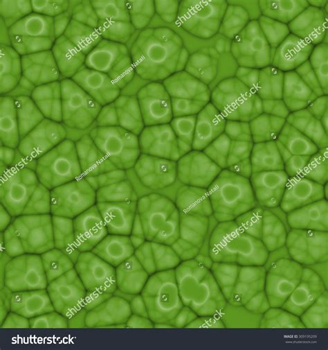 cell pattern en français seamless abstract green pattern plant cells stock
