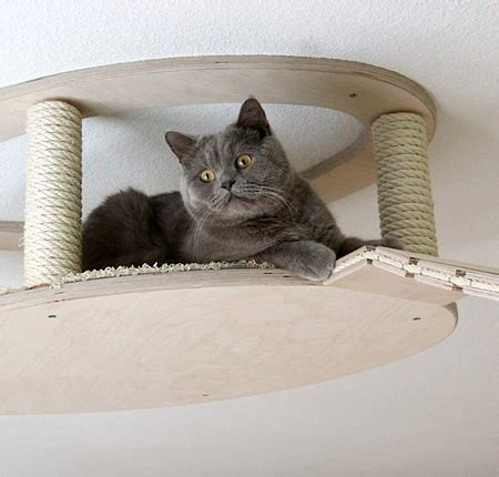 Cat Ceiling by Feline 15 Modern Cat Perches Houses Scratchers