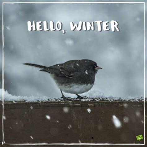 winter quotes  images  share