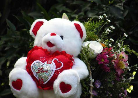 cute hd teddy wallpaper free hd cute teddy bear wallpapers love download