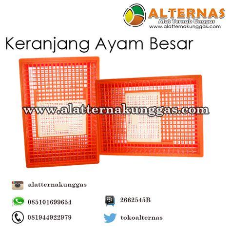 Info Keranjang Ayam jarum suntik socorex alat ternak alat ternak unggas