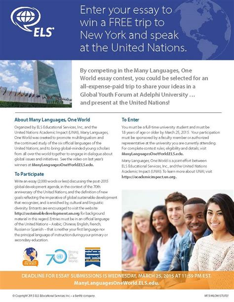 United Nations Essay by United Nations Essay Contest Language Institute