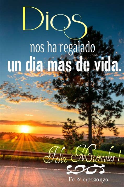 translate vanidad from spanish to english 43 best images about feliz miercoles on pinterest posts