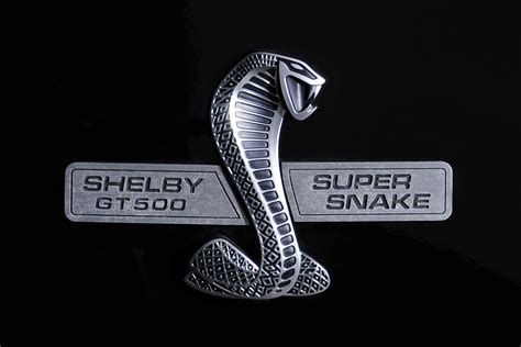 logo ford mustang shelby mustang shelby cobra logo image 116