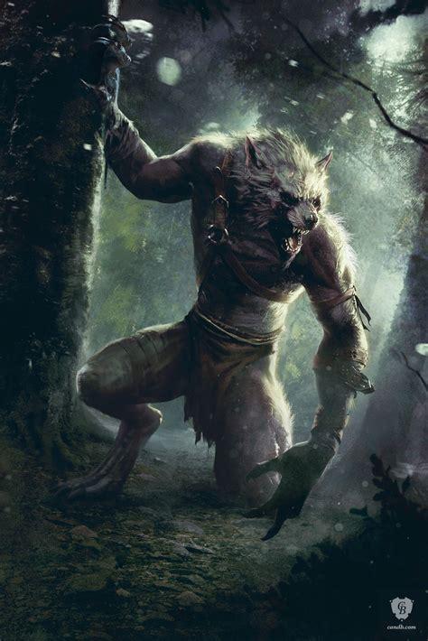 wild hunt witcher 3 werewolf artwork morkvarg witcher 3 cd projekt red