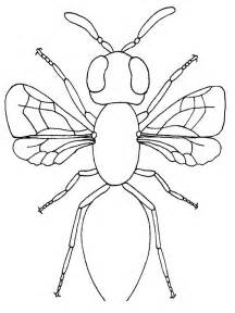 bug coloring pages free printable bug coloring pages for