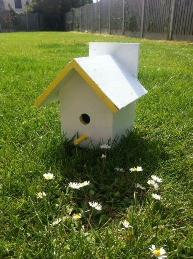 Bird Feeders For Sale Bird Houses And Bird Feeders For Sale In Baltray Louth