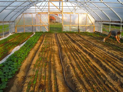 sle business plan greenhouse farm bill 2014 what it means for beginning farmers for