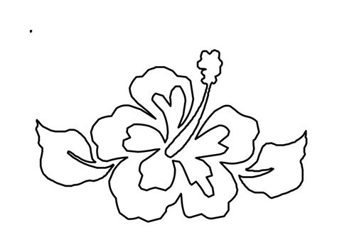 printable pictures of hawaiian flowers free printable hibiscus coloring pages for kids