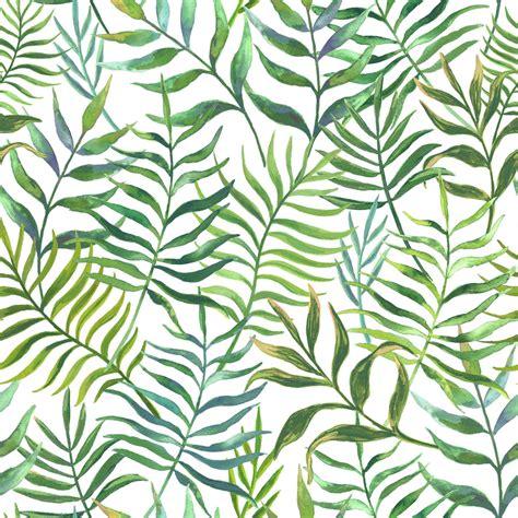 eucaliptus leaves wallpaper mural