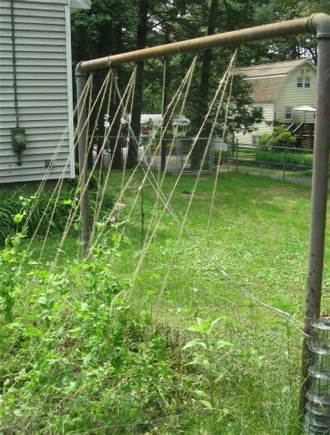 Cheap Garden Trellis Ideas Simple And Cheap Diy Garden Trellis Our Heritage Of Health