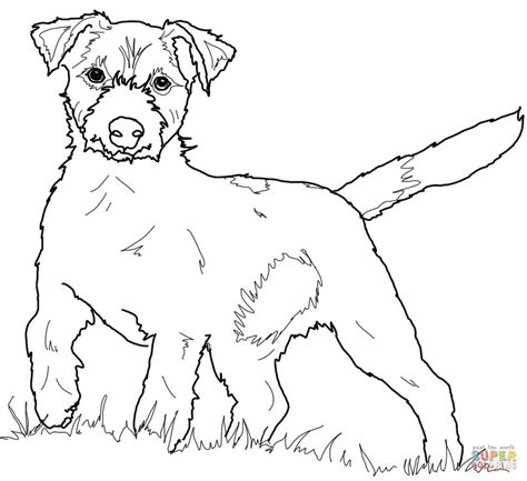 Jack Russells Colouring Pages Terrier Coloring Pages