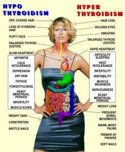 Health beauty conditions of the thyroid hyper thyroid condition