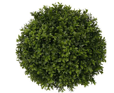 kunstpalme aussenbereich kunstpflanzen au 223 enbereich bestellen