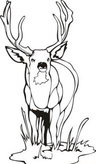 Free Printable Deer Coloring Pages sketch template