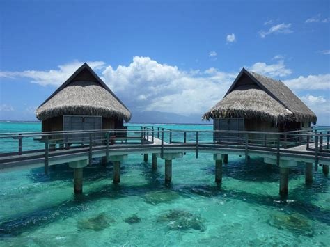 best overwater bungalows in moorea 19 best images about somewhere the water on