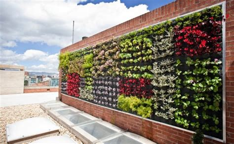 imagenes de jardines verticales pequeños 15 im 225 genes de jardines verticales y c 243 mo hacer el nuestro