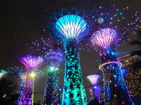 singapore trees of light man made trees at night lights up to music picture of