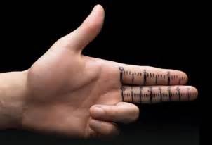penes venosos estudio revela los penes ser 225 n cada vez m 225 s peque 241 os