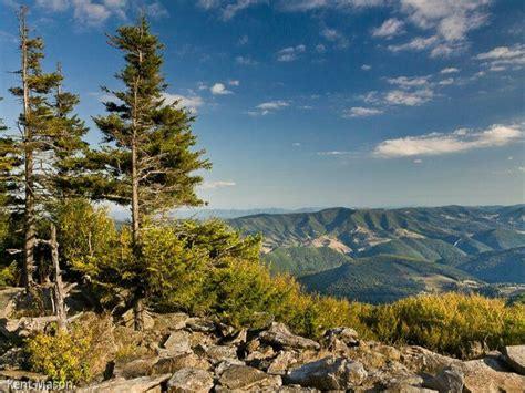 West Virginia Spruce Knob spruce knob west virginia by kent reformation