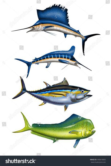 sport fishing boat artwork 4 deep sea sport fish swordfish stock illustration
