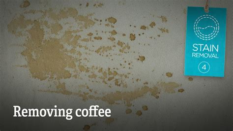 stain removal removing coffee your clothes