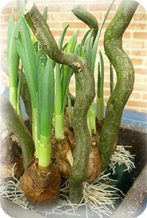 bloemstuk pasen met gekleurd steekschuim en eierschalen pin paasbloemstuk maken met gekleurd steekschuim en