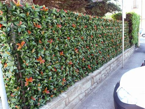 siepi artificiali da giardino siepi finte ornamentali per recinzione siepe artificiale