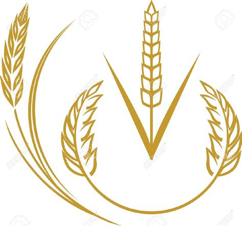 wheat clip grain harvest clipart clipground