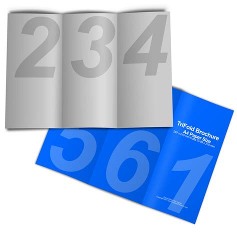 brochure paper sizes to fold or not to fold 6 layout options for