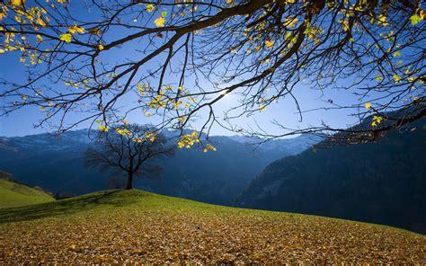 wallpaper free download nature nature wallpaper download download hd wallpapers